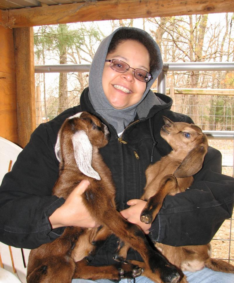 Nubian milk goat kids born at Double C Exotics in south east Oklahoma
